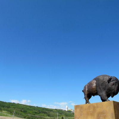 2020_iini-bison-heart_calgary_in-situ_03_adrian-stimson