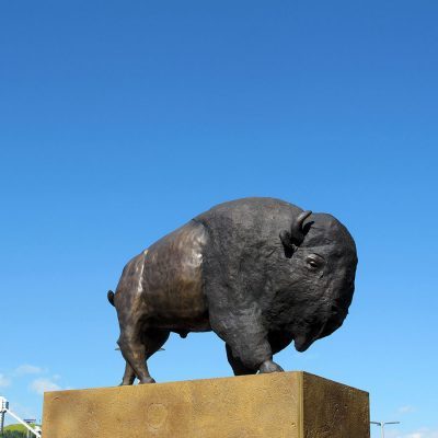 2020_iini-bison-heart_calgary_in-situ_04_adrian-stimson